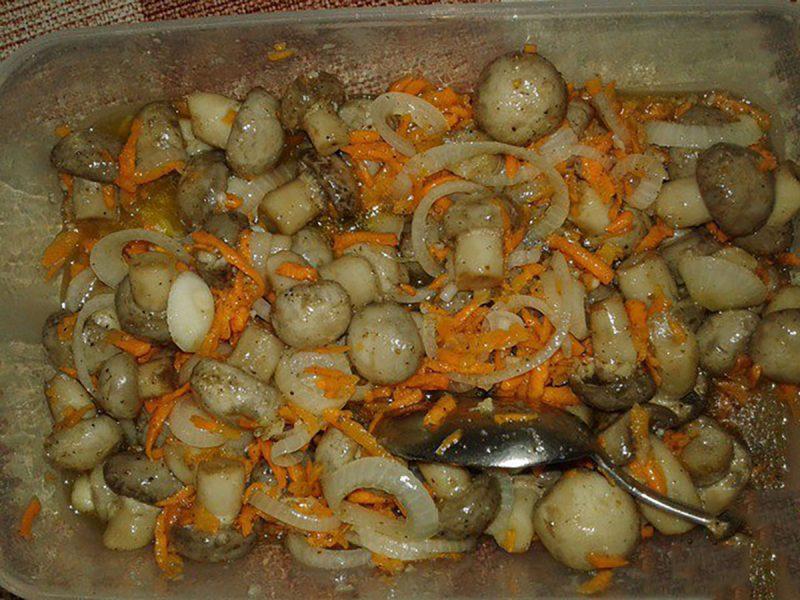 Ciuperci champignon marinate rapid cu ceapa si morcov